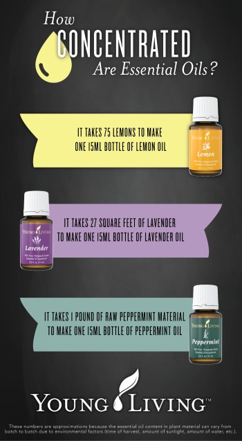 how concentrated are essential oils