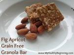 Fig Apricot Grain Free Granola Bar