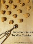 Cinnamon Raisin Toddler Cookies